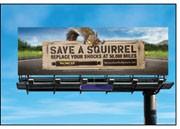 Squirrel Billboard